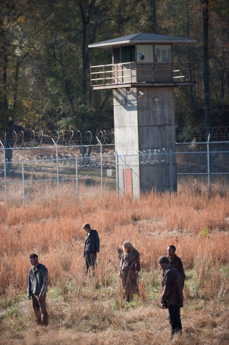 Walkers - The Walking Dead - Season 3, Episode 16 - Photo Credit: Gene Page/AMC